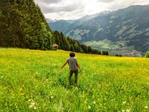 7 Fab Things To Do On Your Austria Trip to Zillertal in Tirol, Alps in Austria, things to do in Austria, Austria travel