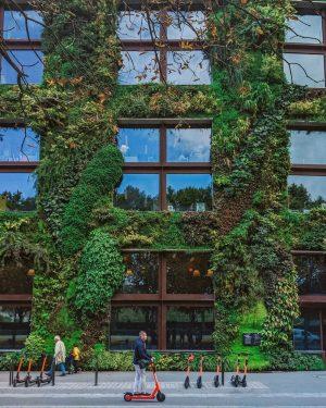 quai branly paris, quai branly architecture, biggest museum in paris