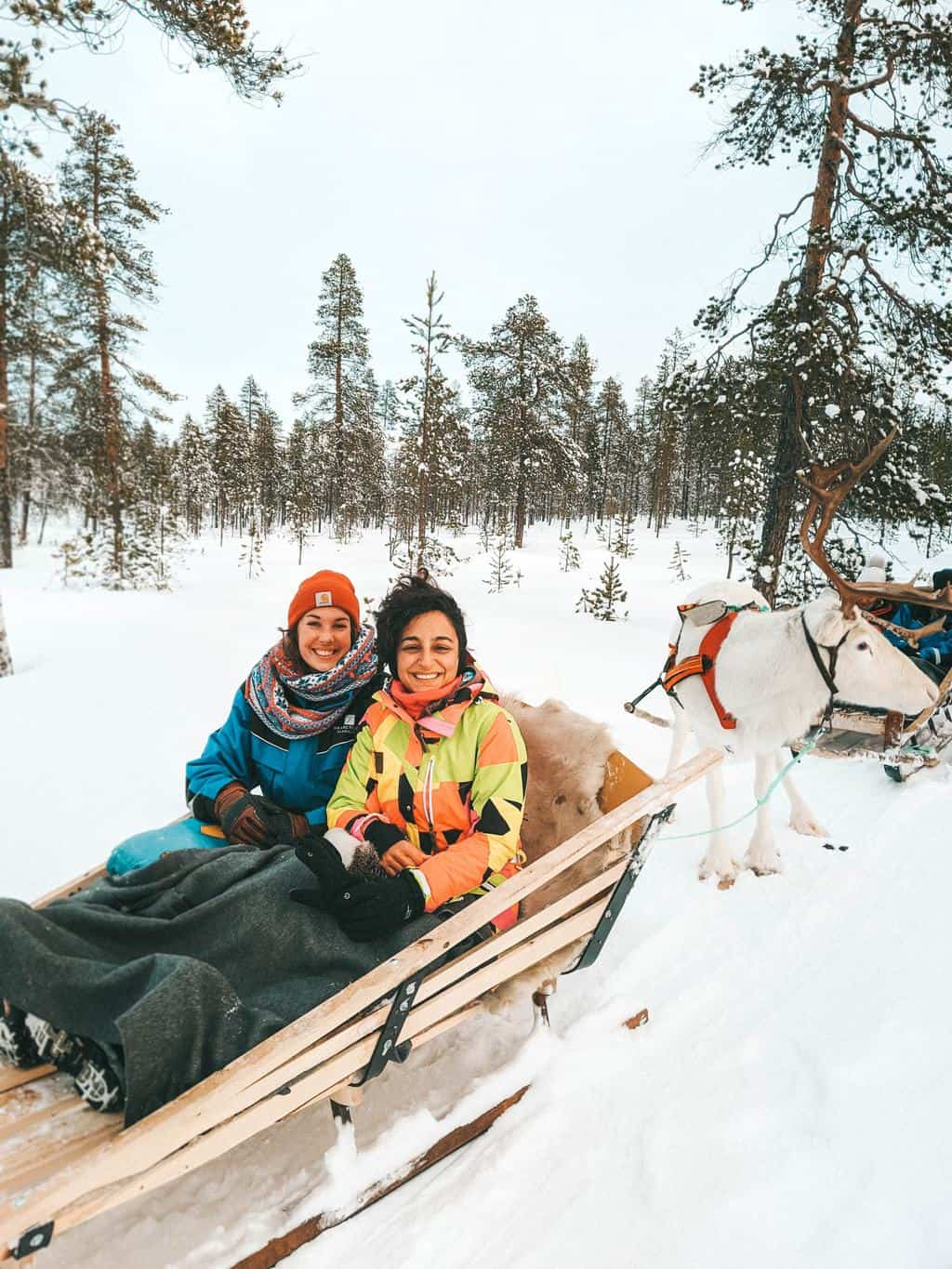 two women sitting in a ledge pulled by reindeer Finnish Lapland, Lapland destinations, Lapland Finland, Inghams