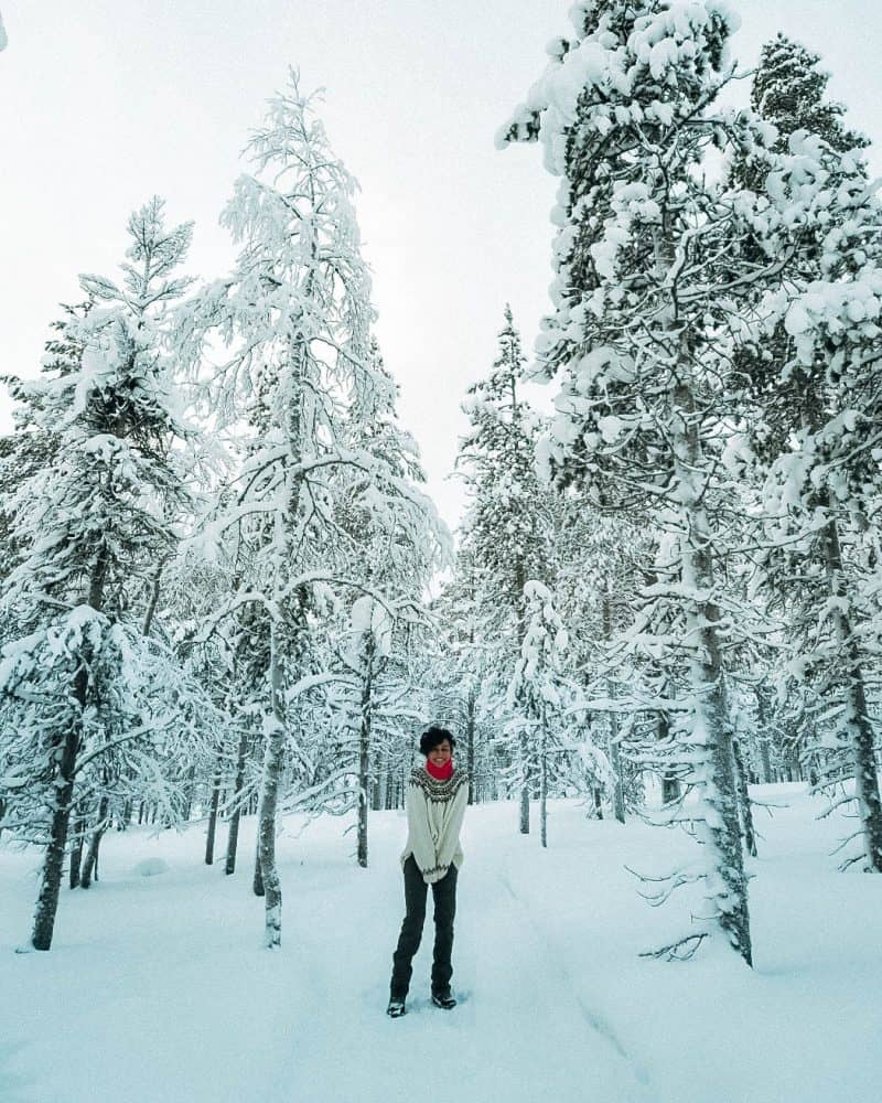 A girl standing amongst snow covered trees Finnish Lapland, Lapland destinations, Lapland Finland, Inghams