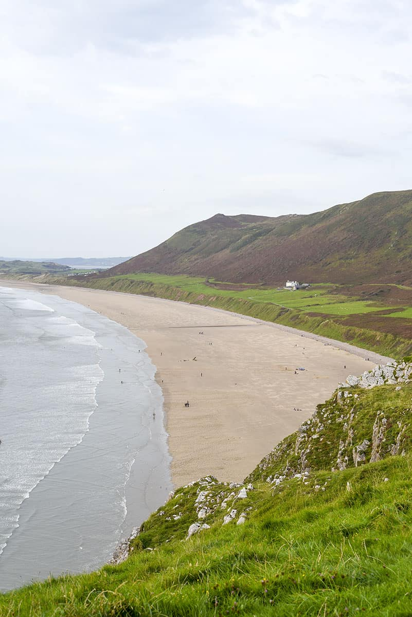 A vast sandy beach from a viewpoint, with a grassy foreground on an overcast day