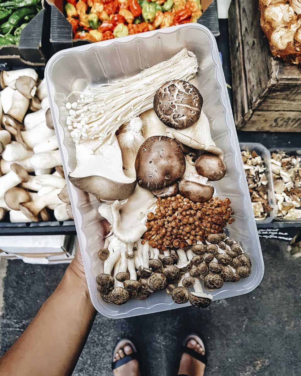 A view from above of a hand holding a plastic container full of different types of mushrooms, with a view of the feet of the person holding the box