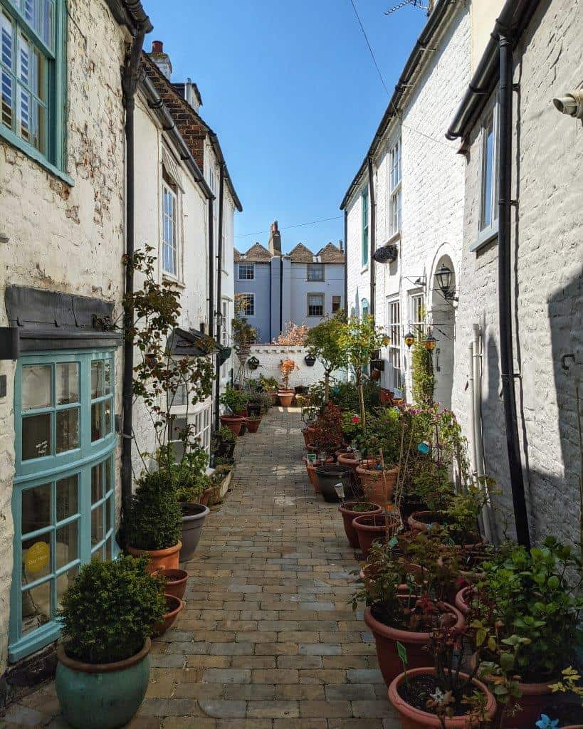 A picturesque residential alleyway flaked by numerous plant pots along both sides and whitewashed houses