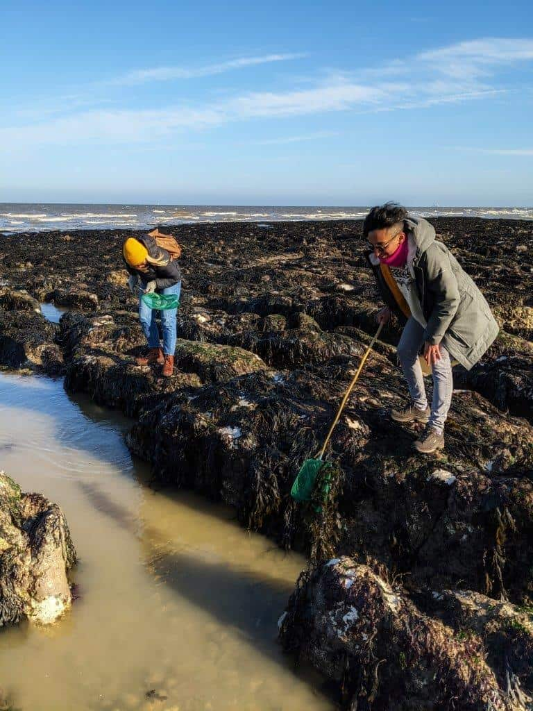 Two girls standing on a rocky shoreline, both dipping fishing nets into the murky sea water under a blue sky