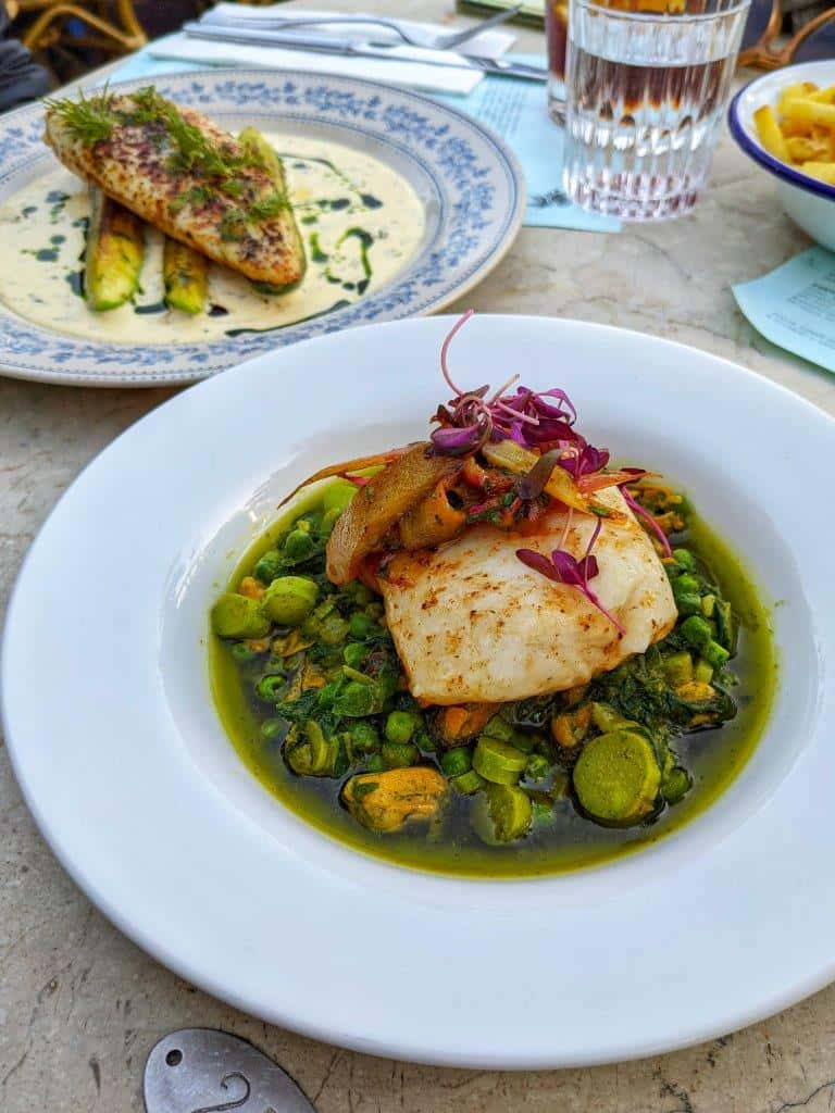 A vibrant restaurant dish comprised of a piece of fish on a green ratatouille of spring vegetables with a second fish dish in the background and a glass of wine